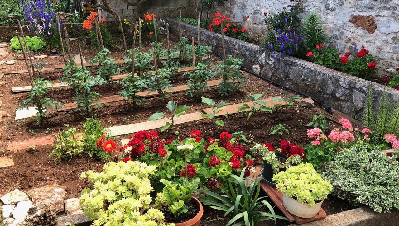 Kuća na prodaju u Vrboskoj s lijepim vrtom